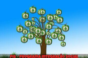 PIS-Programa-Integração-Social-1